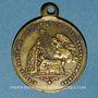 Coins Naissance du Prince impérial. 1856. Médaille en laiton. 23,50 mm
