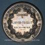 Coins Saint-Dié (Vosges). Comice agricole. 1877. Médaille argent