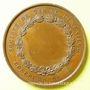 Coins Société de Tir de Lunéville. Concours. Médaille en cuivre. 51 mm. Signée Bescher. Poinçon : abeille