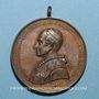Coins Vatican. Léon XIII (1878-1903). La Vierge au-dessus du monde catholique. 1887. Médaille bronze
