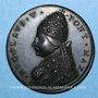 Coins Vatican. Nicolas V (1447-1455). Jubilée de 1450. Médaille de restitution, bronze