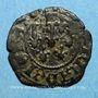 Coins Comté de Provence. Jeanne de Naples (1343-1382). Liard