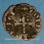 Coins Comté de Provence. Robert d'Anjou (1309-1343). Obole coronat reforciat