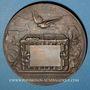 Coins Guerre de 1870-1871. Emploi des pigeons. Médaille bronze. 63 mm. Gravée par Degeorge