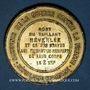 Coins Guerre de 1870-1871. Mort de Néverlée. Médaille étain bronzé. 45,7 mm