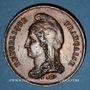 Coins Guerre de 1870-1871. Mort du duc de la Rochefoucauld. Médaille étain bronzé. 45,8 mm
