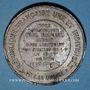 Coins Guerre de 1870-71. Mort de Paul Richard, sous-lieutenant des mobiles de S. & O. Médaille étain 45,8