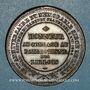 Coins Révolution de 1848. Fraternisation des gardes nationales. Médaille cuivre. 33,3 mm