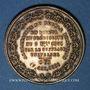 Coins Révolution de 1848. Vote du Plébiscite 1851. Médaille cuivre jaune. 35 mm