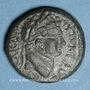 Coins Titus (69-81). Bronze. Hippos, Décapole (Antioche ad Hippum)