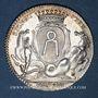 Coins Bretagne. Mairie de Nantes. Gelée de Premion. Jeton argent 1780-1781