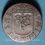 Coins Franche-Comté - Besançon. Co-gouverneurs - Jean-Antoine de Tinseau. Jeton cuivre 1666