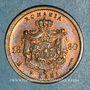 Coins Imitation de Lauer. Roumanie. Charles I, prince (1866-1881). 2 bani 1880