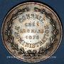 Coins Institut industriel agronomique et commercial du Nord de la France 1875, jeton argent, rond 37,8 mm