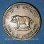 Coins Lyon (69). Société de St Antoine, 17 janvier 1889. Jeton publicitaire