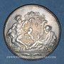Coins Lyon. Académie Littéraire. Jeton argent 1700. Date en chiffres arabes