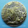 Coins Nice. 82e congrès des Notaires de France 1986. Jeton bronze. 30,8 mm