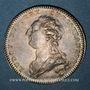 Coins Touraine. Mairie de Tours. E.J.C. Benoist de la Grandière. Jeton argent 1785